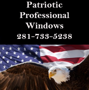 Patriotic Professional Windows  Logo